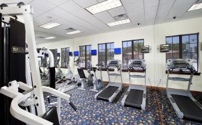 Paradise Palms Resort Fitness